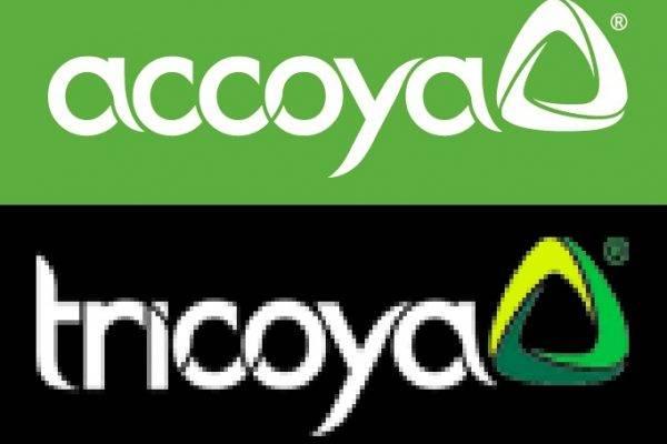 Accoya logo - working together